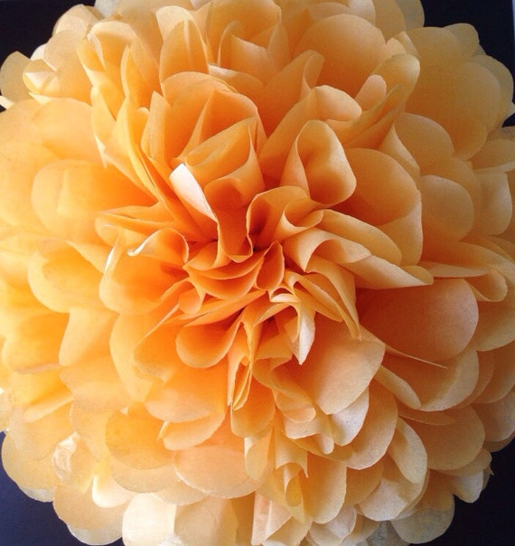 Peach Tissue Paper Pom Poms Baby Shower Fall Colors Decoration Wedding Nursery Bridal Shower Birthday Party Decor