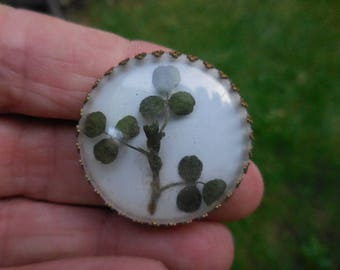 Vintage 1940s to 1950s Round Pin/Brooch With Pressed Three Leaf Clovers/Shamrocks Irish Ireland Gold Tone Setting Plastic