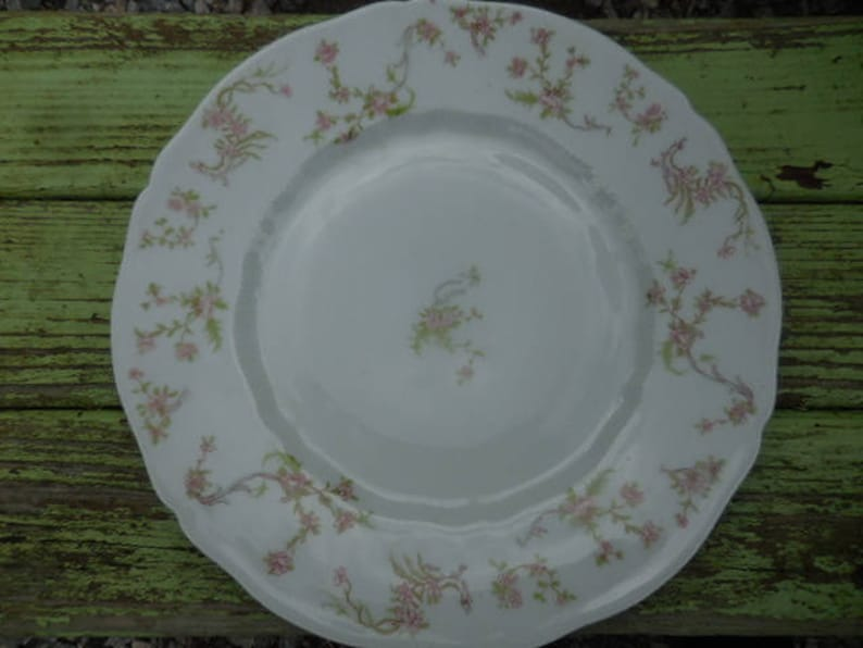 Single Pink FlowersGreen Leaves German China Dainty Dining Room Decor Saxony Dinner Plate Antique 1800s to 1900s Fraureuth Germany FC 1