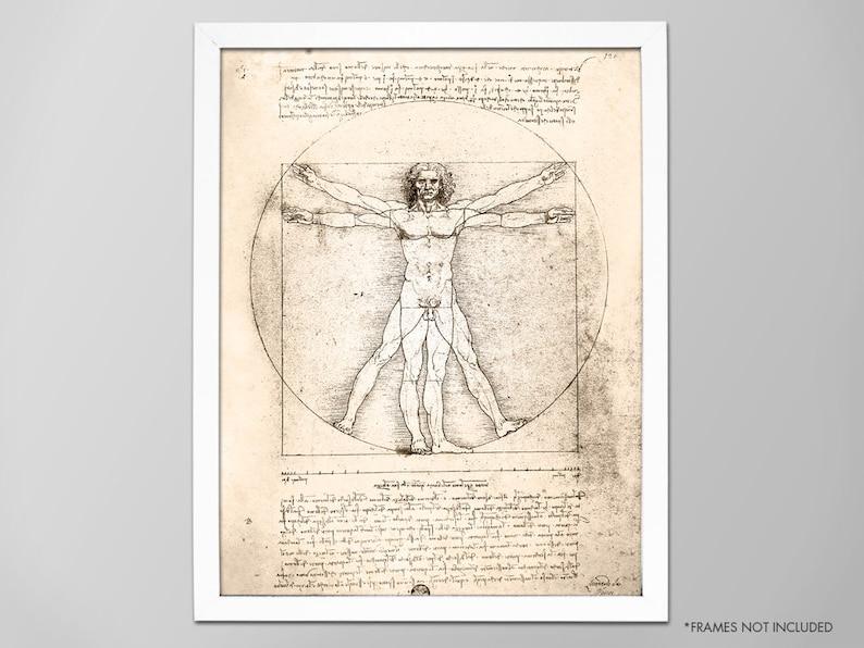 Vitruvian Man Da Vinci Human Anatomy Art Print Leonardo Da Etsy