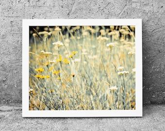Wildflower Photograph -  Nature Photography - Nature Walk - Digital Photography - Photography Download - Photograph Digital Print