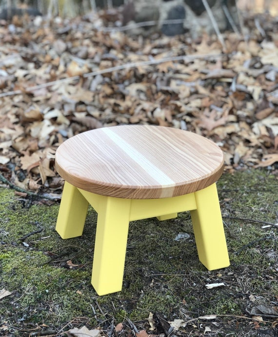 Fabulous Round Top Step Stool Riser Modern Contemporary Wood Stool Painted Colors Squirreltailoven Fun Painted Chair Ideas Images Squirreltailovenorg