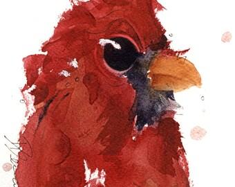 5 x 5 Bird Art, Cardinal Art, Bird Art Print