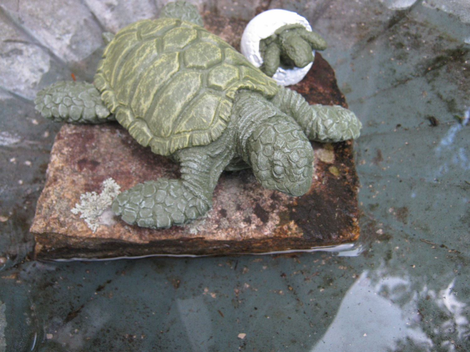 Sea Turtle With Hatching Turtle Egg Concrete Turtle And