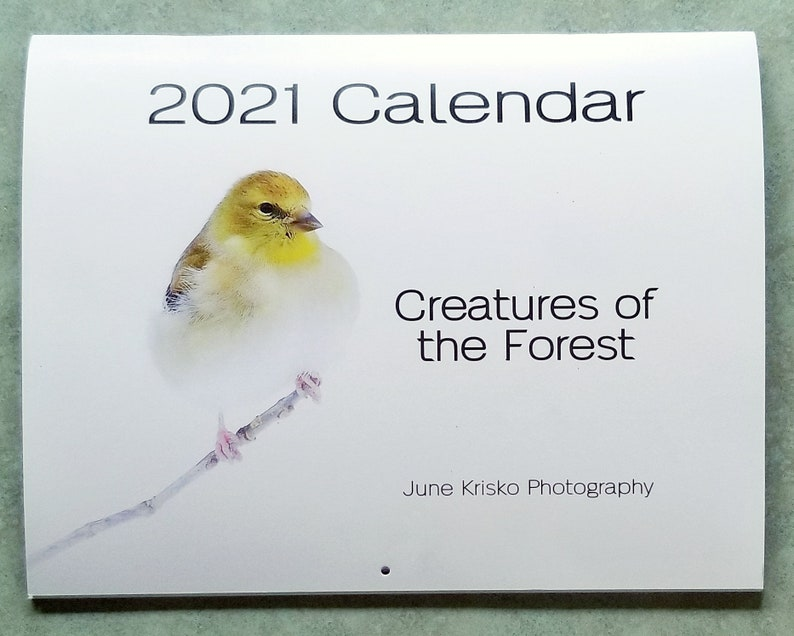 2021 Creatures of the Forest Wall Calendar free shipping in image 0