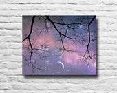 Starry Night Sky. Night p...