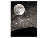 Night Photo. starry sky. ...