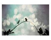 Hummingbird art. surreal ...