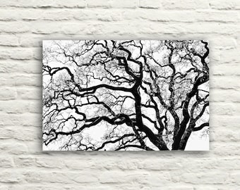 """Nature photography. Black and White. Tree Branches. Oak Tree """"Tangled"""". Canvas Wall Art. Home Decor. Winter. Halloween."""