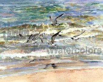 "Lake Superior Seagulls, Sea Birds, Seascape, Great Lakes, Watercolor Painting Print, Wall Art, Home Decor, ""Superior Seagulls"" Judith Stein"