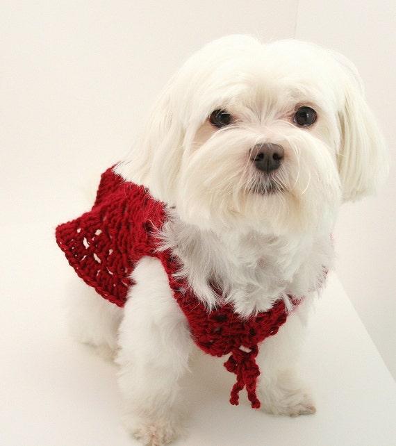 Pdf Digital Patterncrochet Dog Clothes Patterndog Etsy