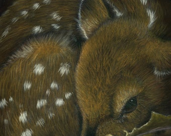 Fawn- a pastel drawing from artist Wendy Leedy's wildlife collection- fine art print, signed