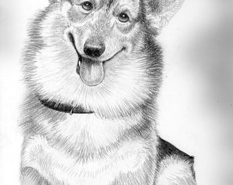 Corgi Cutness- a pencil drawing from the artist Wendy Leedy's dog collection- fine art print, signed