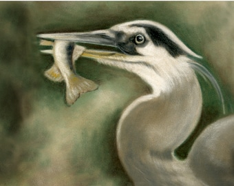 Blue Heron- a pastel drawing from artist Wendy Leedy's wildlife collection