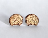 Wood brain studs. With st...