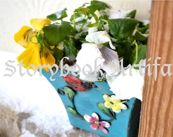 Frosted Pansies Digital Image, High Resolution Stock Photography Instant Download Photo, Frozen Flowers Snow Garden Yellow Pot Mothers Gift