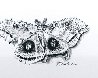 "Broken Wing--->An Original 4x6"" Ink Painting"