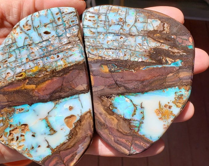 "396 Gram, Koroit Boulder Wood Opal Specimens - Matched Pair - 3 3/4"" Across"