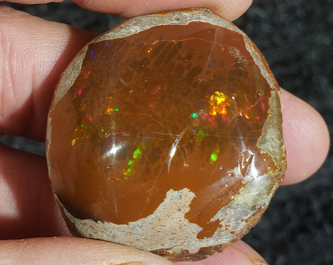 109 CT. Ethiopian Shewa Opal Polished Specimen - Brown Hydrophane