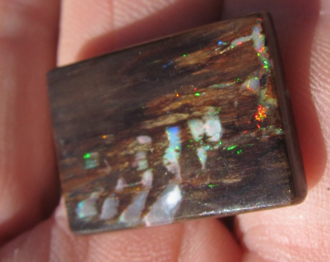 16.5 Ct. Virgin Valley Nevada Wood Opal - 25 x 17 mm