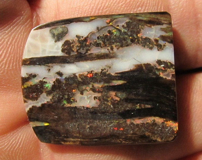 15.2 Ct. Virgin Valley Nevada Wood Opal - 27 x 24 mm