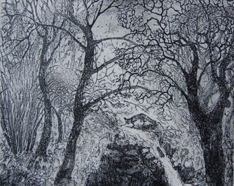 In a wild place, etching by Flora McLachlan, waterfall, fox, river, water, trees and hills, landscape
