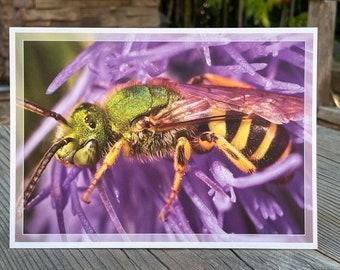 Green bee greeting card pearlescent art print