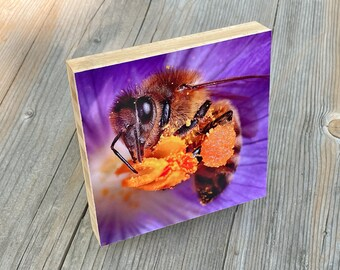 Honey bee organic bamboo mount art print