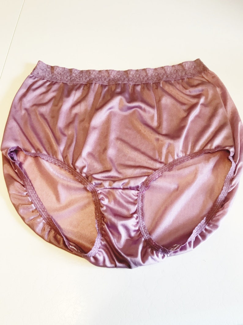 bfa1ffcd1 Vintage Mauve Nylon Panties Hanes Size 10