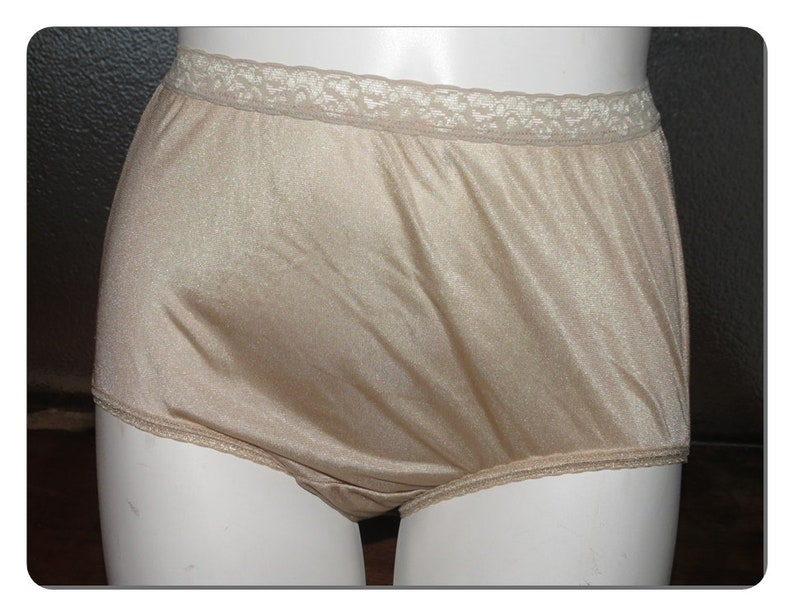 de517aa58 Haines Vintage Nylon Panties Size 8