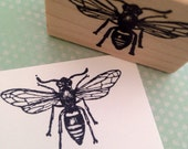 Paper Wasp Wood Mounted Rubber Stamp 1117