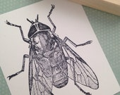 Huge House Fly Wood Mounted Rubber Stamp 3755