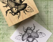 Big Scarab Beetle Rubber Stamp 6691