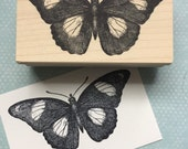 Spotted Butterfly Rubber Stamp