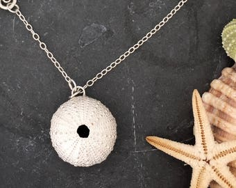 Large Sea Urchin Necklace with Seahorse Clasp, seashell, sea,