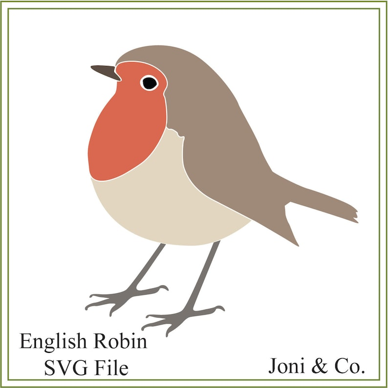 graphic regarding Printable Bird Pictures called English Robin svg, chook svg, robin svg, printable chook, vinyl, greeting playing cards, invites, slicing, British, Xmas birds, Xmas svg
