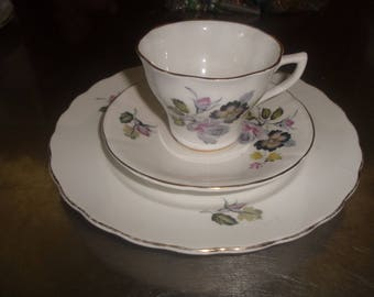vintage bone china teacup saucer plate luncheon trio royal kent floral