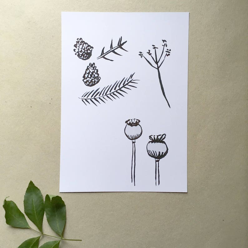 Nature art print image 0
