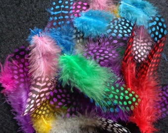 """Mixed Colors New Guinea Feathers-1""""-3""""-25 PCS"""