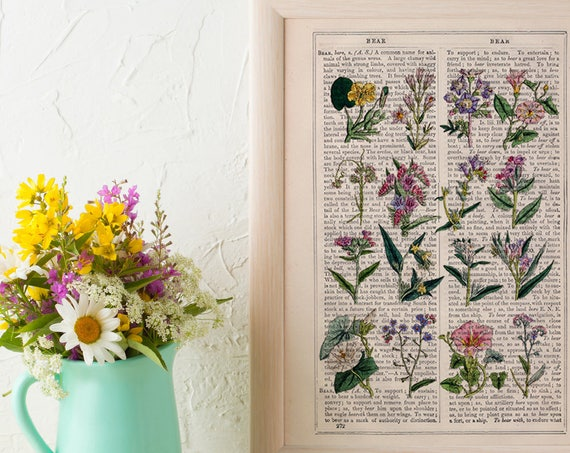 Wild flowers collection Print on Vintage Dictionary Book page, Wild flora Wall art naturalist illustration BFL215