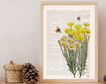 Yellow wild flowers with bees Print- Housewarming Gift- Bee Wall Art - Dictionary Art Print - Bees Book Page Art- Flower Book Print - BFL238