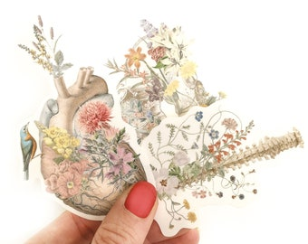 Christmas Clear Stickers - Human Anatomy Stickers - Anatomical Stickers - Transparent Decals - Anatomical Heart - Floral Anatomy - STC029