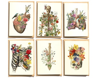 Christmas svg Gift - Anatomy and flowers. Notecards set of six , Blank note cards set. Greeting cards set. NTC09WA6