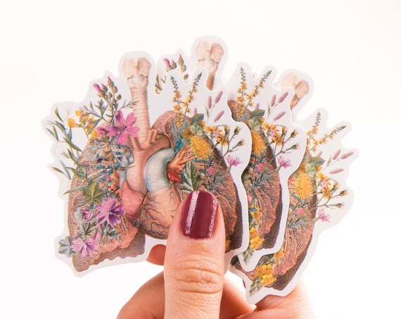 Lungs and Heart with wild flowers Anatomy stickers, laptop tickers, stickers, sticker, stickers laptop, anatomy art STC014