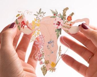 Woman gift Feminist Sticker - Uterus Sticker - Flower Uterus- Laptop Sticker - Feminist Gift- Transparent Stickers - Anatomy Sticker- STC021