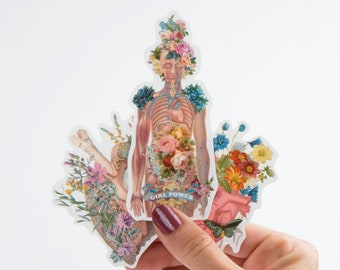 Back to school Colorful Anatomy Stickers - Set of 3 - Stocking Stuffer - Anatomy Art - Brain Sticker - Flower Anatomy - Laptop Decal- STC012