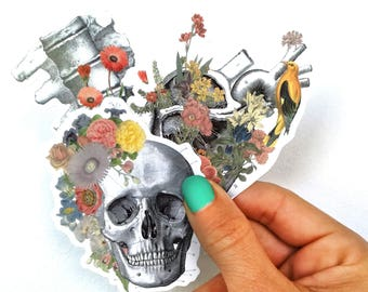 Soft colors Anatomy stickers set Flowers Human skull vertebrae and heart laptop stickers Decal sticker Medical student STC004