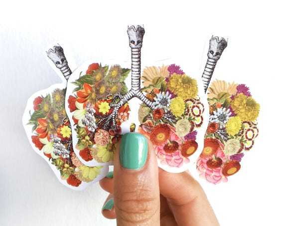 Lungs with flowers laptop stickers stop smoking or medical student gift STC008