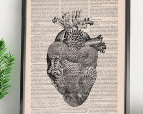 Heart full of Sea, Decorative Art, Corals and shell on heart , Wall hanging, Heart art print, SKA167