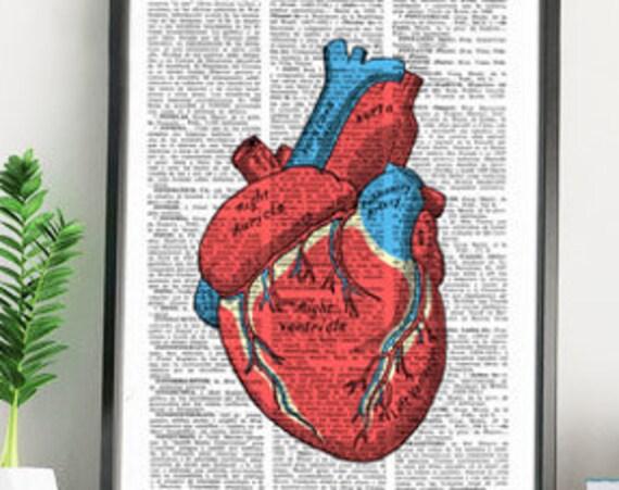 Human heart school encyclopaedia style. Heart Wall art Anatomy study print, Medicine gift, Giclee SKA163